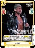【RR+仕様】SANADA[Re_NJPW/001B-072]