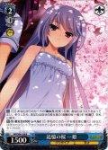 追憶の桜 一姫[WS_GRI/S84-108R]